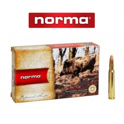 BALA NORMA 308 WIN 180GR PLASTIC POINT