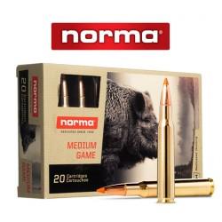 BALA NORMA 30-06 SPRING 170GR TIP STRIKE