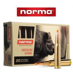 BALA NORMA 308 WIN 170GR TIP STIKE