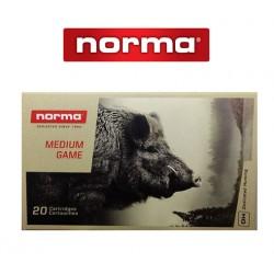 BALA NORMA 30-06 SPRING 180GR PLASTIC POINT